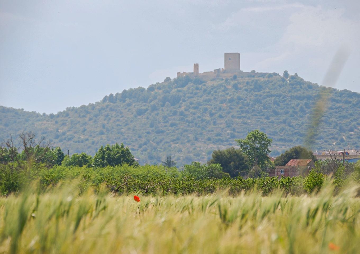 Castell_04-min